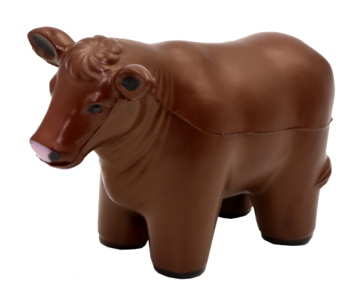 Beef Cow