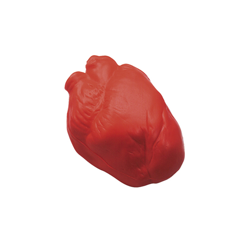 Anatomic Heart Squeezies